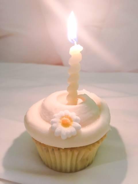 Magnolia Bakery Cupcakes | Chidi Beauty First Anniversary • chidibeauty.com