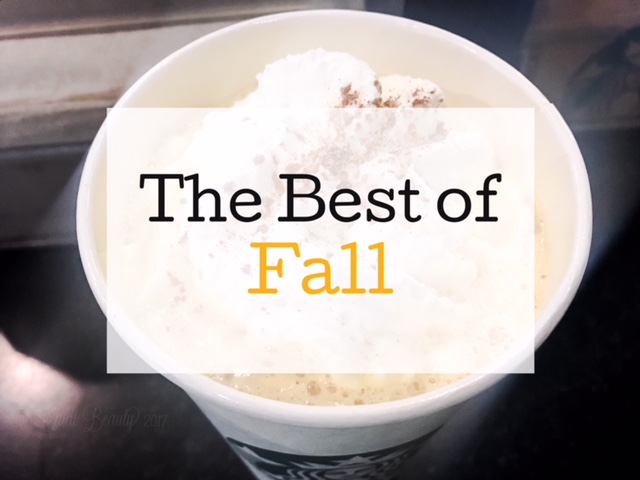 The Best of Fall 2017 • chidibeauty.com